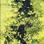 """Détail installation """"Géographies jaunes et noires"""". Colz'art 1989"""