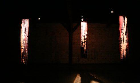 """Peaux pour la pièce """"Dictatures"""", 2011"""
