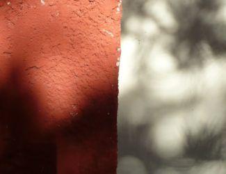 Ombres et lumières, 2010